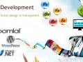 web-design-development-services-in-bangalore-small-0