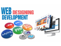 professional-web-design-development-service-in-dubai-small-0