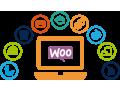 woo-commerce-development-design-service-in-dubai-small-0