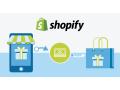 professional-shopify-website-design-development-service-in-dubai-small-0