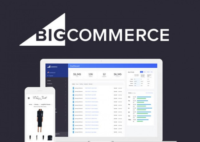 big-commerce-development-design-service-in-dubai-big-1
