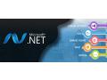 net-development-design-service-in-dubai-small-1