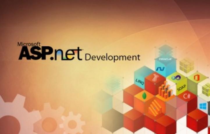 net-development-design-service-in-dubai-big-0