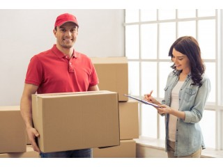 A. B Movers and Packers In DIP 0502472546