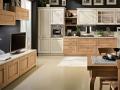 modern-luxury-kitchen-designs-and-european-wardrobes-sydney-eurolife-small-1