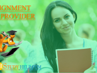 Get the Best Assignment Help Provider from Case Study Help Experts