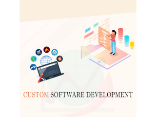 Tech ICS - Custom Software Development