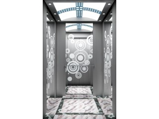 450 Kg Passenger Elevator (Brand: Schneider-Germany)
