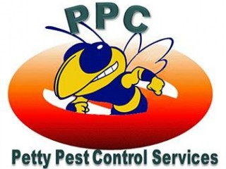 Raccoon Removal Services | Petty Pest Control Services