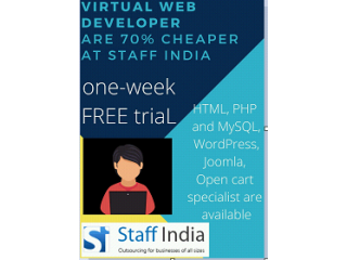 Hire EXPERIENCED Virtual Web Developer are 70% cheaper at Staffindia...!!!