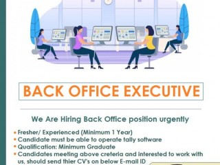 Hire Back Office Executive