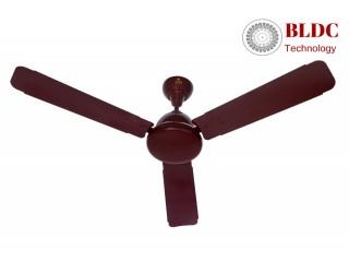 Buy BLDC Macho Ceiling Fans Online in India Yash Fans Pvt Ltd