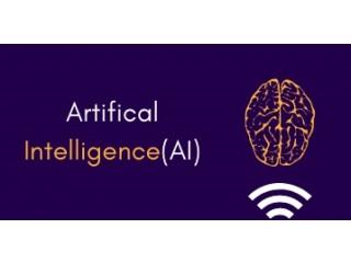 Artificial Intelligence Online Training