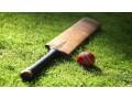 fantasy-cricket-website-app-development-expert-small-0