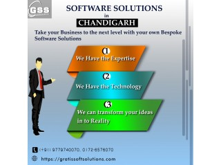 Software solutions chandigarh
