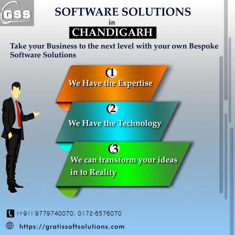 software-solutions-chandigarh-big-0