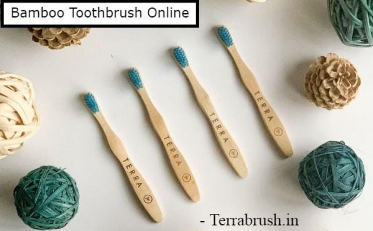 bamboo-tooth-brush-india-terrabrush-big-0