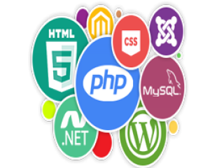 Website development company in vashi