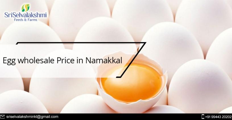 namakkal-egg-production-namakkal-egg-suppliers-dealers-big-0