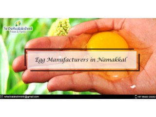 Egg Manufacturers in Namakkal | Namakkal Egg Production