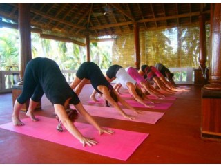 De-Stress Your Self With Ayurvedic Retreats While Travelling To Kerala