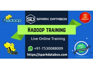 Online Training and Course Sparkdatabox