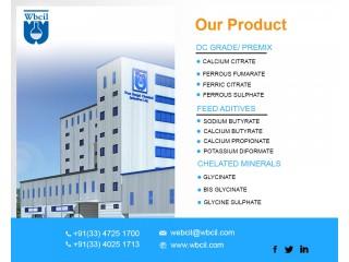 Best Ferrous Ascorbate Manufacturer In India _ WBCIL