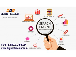 Best SEO Freelancer in Chennai | Digi SEO Freelancer