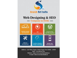 Website Designing & SEO Company in Delhi, India