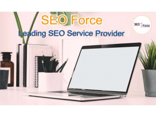 SEO Company in Salem - SEO Force