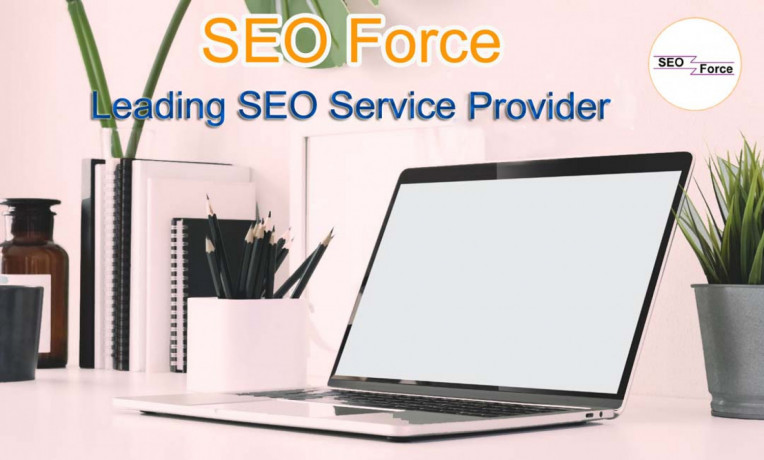 seo-company-in-salem-seo-force-big-0