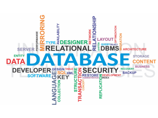 Top Database Administration Online Course | It-skool | DBA Online Course