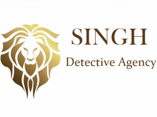 Best Detective Agency in Punjab - Singh Detective