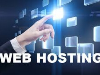 Web Hosting Company in Delhi Providing Quality Service at Reasonable Price