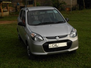 Alto car for rent