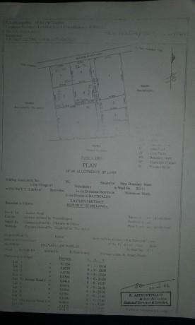 bare-land-for-sale-in-batticaloa-big-0