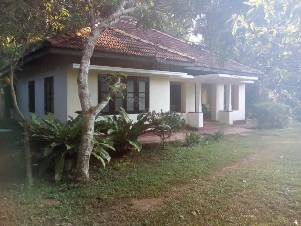 house-land-for-sale-big-0