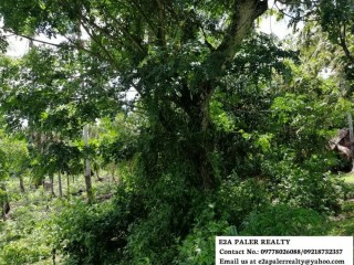 5.7 Hectares Agri lot for Sale