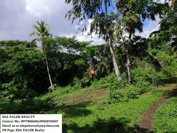 57-hectares-agri-lot-for-sale-big-1