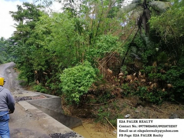 57-hectares-agri-lot-for-sale-big-0