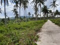 5hectares-lot-beach-front-for-sale-small-1