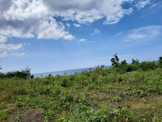 5hectares LOT-BEACH FRONT for Sale
