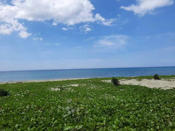 5hectares-lot-beach-front-for-sale-big-2