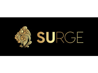 Surge Digital - Best Offshore Outsourcing Service Provider