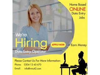 Typing ; data entry at home based online