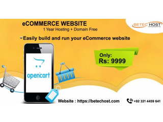 ECommerce Web Development in Islamabad