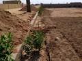farm-houses-plots-land-on-installments-small-0