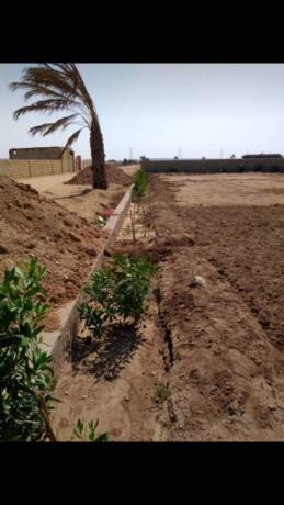 farm-houses-plots-land-on-installments-big-0