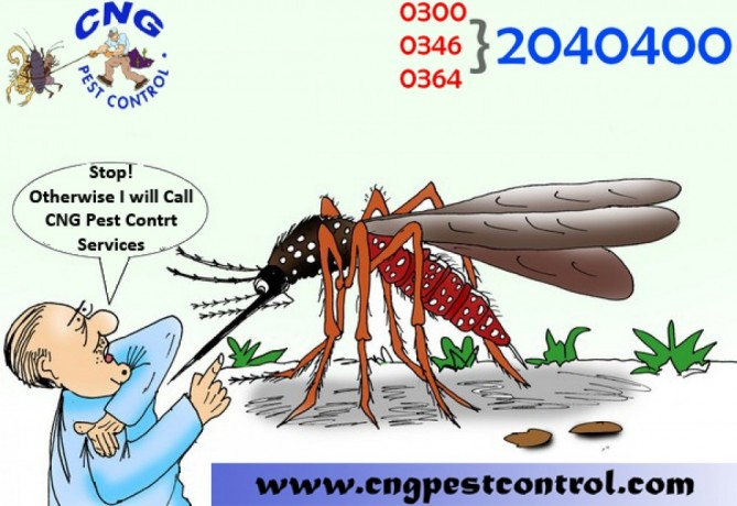 wildlife-control-services-emergency-service-big-0
