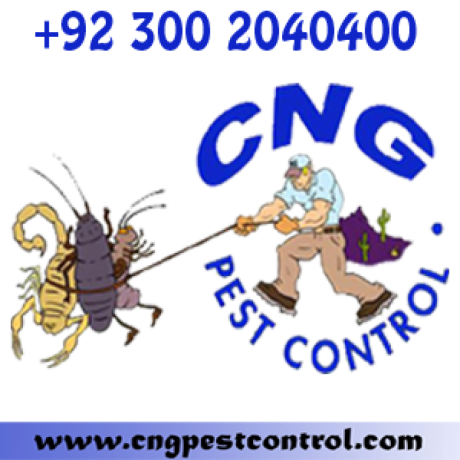 wildlife-control-services-emergency-service-big-2